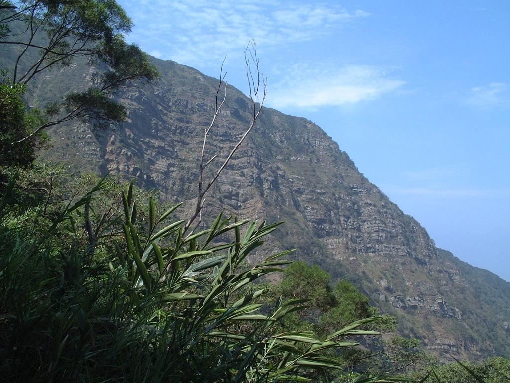 里龍山山景